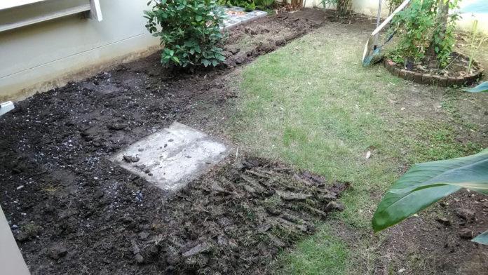 diyสวนหลังบ้าน3